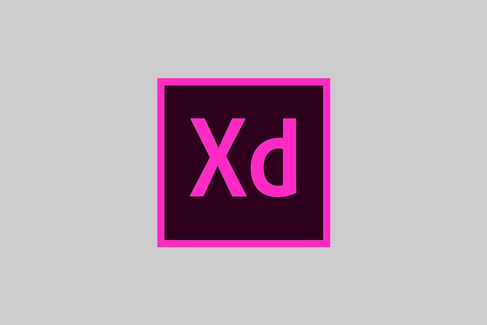 Adobe XD 社内勉強会の様子をレポート!